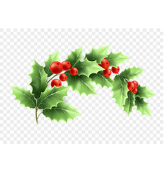 Christmas crescent holly branch vector
