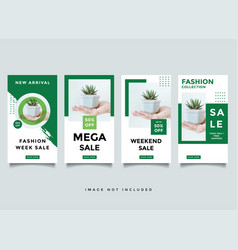 fashion instragram story media post design vector image