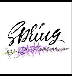 handwritten lettering spring hand drawn vector image