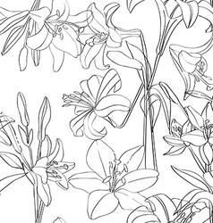 lilies pattern superposed vector image