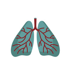 human lungs isolated icon vector image
