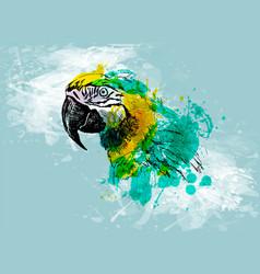 colored hand sketch head ara vector image