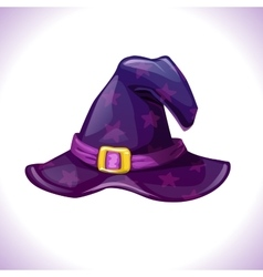 Cartoon witch hat icon vector