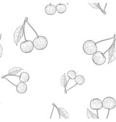 cherries outline hand drawn sketch seamless vector image