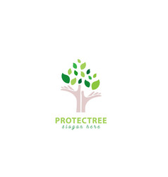 protection tree logo design vector image