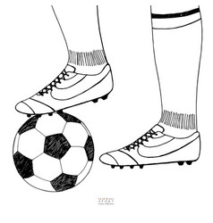 soccer ball under player boot hand drawn sketch vector image