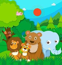 Wild animals in the jungle vector
