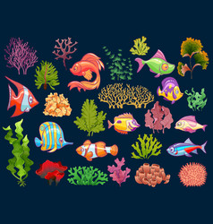 cute kid underwater set aquarium baby fish and vector image