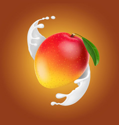 mango in milk splash yogurt dessert realistic vector image