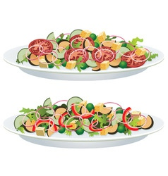 vegetable salads vector image vector image