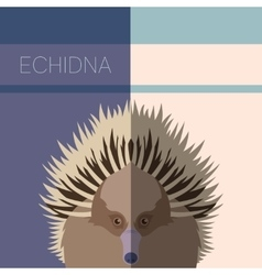 Echidna Flat Postcard vector image vector image