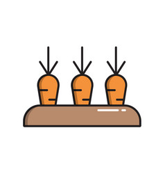 bed with carrots simple gardening icon in trendy vector image