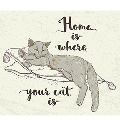 Cat on pillow and lettering vector image