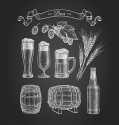 Chalk sketch beer vector