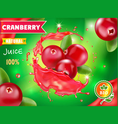 Cranberry juice drink splash advertising vector