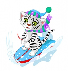 Fast fun tiger vector