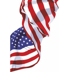national flag of the usa vector image