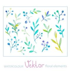 Set watercolor floral elements vector