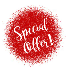 special offer inscription on the burst in style vector image