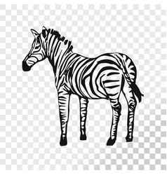 zebra sketch isolated on transparent background vector image