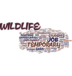 temporary wildlife job text background word cloud vector image vector image