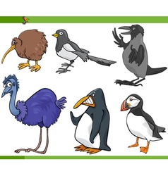 Birds cartoon set vector