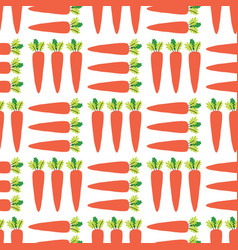 Carrots seamless pattern vegetable field vector