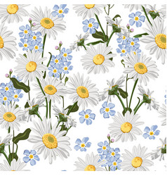 Chamomiles and forget-me-not flowers couple vector