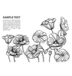Contour image of poppy flowers floral element vector