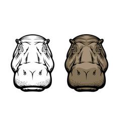 hippopotamus hippo wild african animal face icon vector image