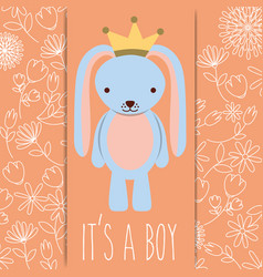 Its a boy baby shower blue rabbit with crown card vector