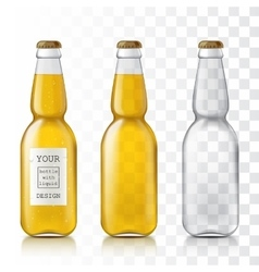 Realistic transparent glass bottles vector image vector image