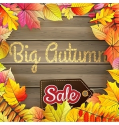 Autumn big sale typography poster eps 10 vector