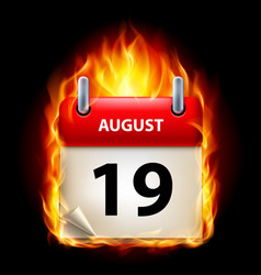 nineteenth august in calendar burning icon on vector image