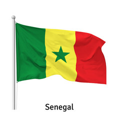flag republic senegal vector image