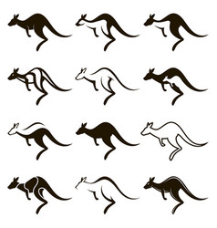 jumping kangaroo icon set vector image