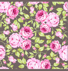 Seamless floral pattern with pink roses and leaves vector