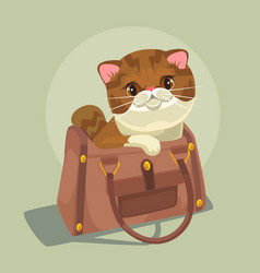 Small cat character sitting lady bag vector