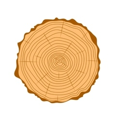 Tree wood slices vector image