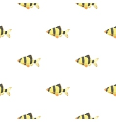 Barbus fish icon cartoon Singe aquarium fish icon vector image vector image