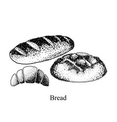 black and white bread on a white background vector image