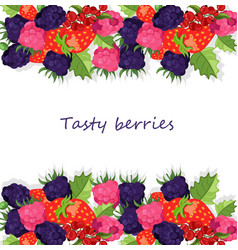 blackberries background banner vector image vector image