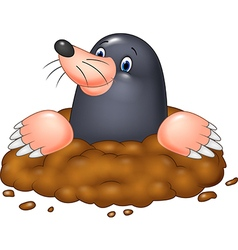 Cartoon funny mole vector