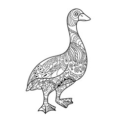 goose coloring book vector image