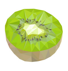 Kiwi polygonal vector