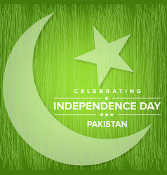 Pakistan independence day green scribbled vector
