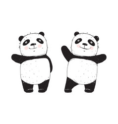 panda bear isolated vector image