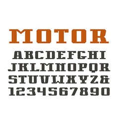 Serif font and numerals vector image vector image