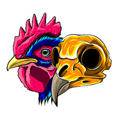 skull rooster head realistic vector image