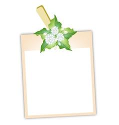 Blank Photos with Jasmine Flowers vector image vector image